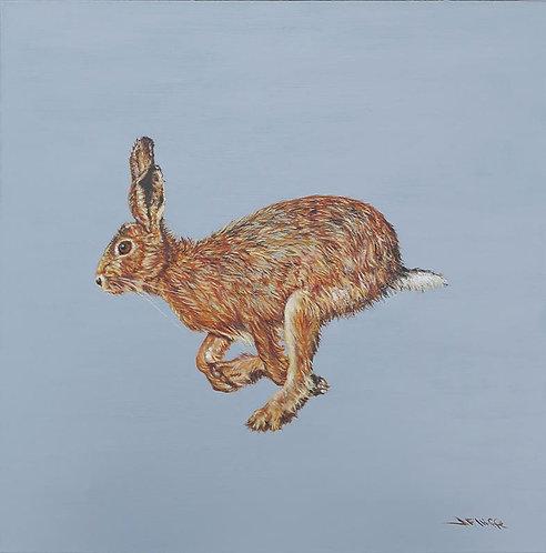 Running Hare by Jill Iliffe