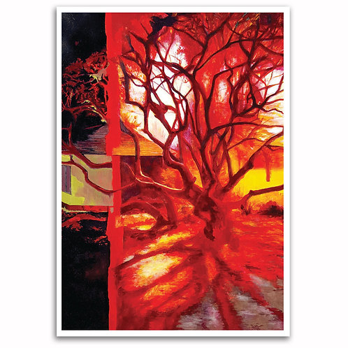 Shadow Tree by Duncan Allan