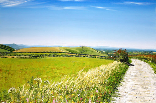 South Downs Way to Wolstonbury Hill by Emily Grocott