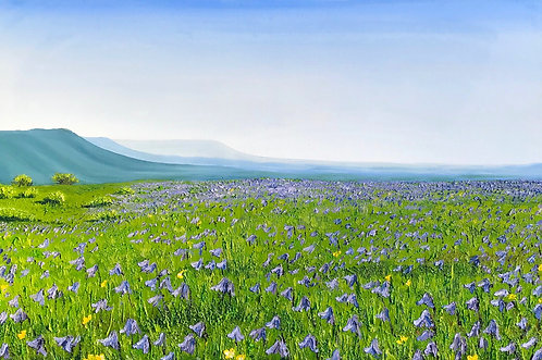 Greetings Card of Bluebells on Newtimber Hill by Emily Grocott