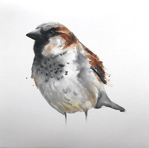 SOLD House Sparrow by Emma Gillo