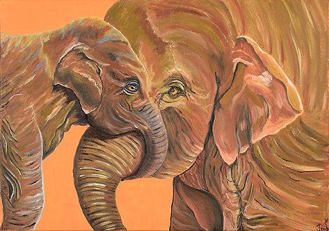 Hey Mum 'Elephant Cuddle' by Jayne Crow
