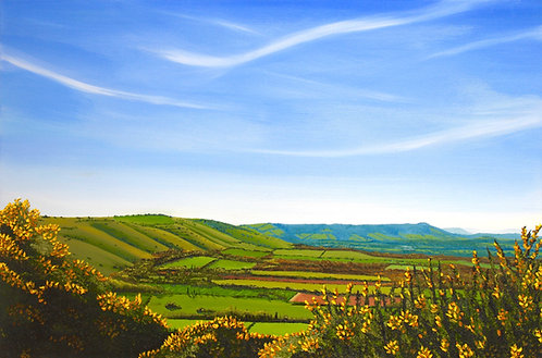 Greetings Card of Gorse on the Downs by Emily Grocott