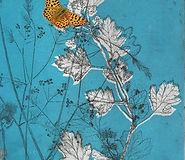 Birling Butterflies.jpg