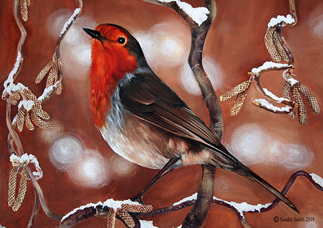 Robin by Sandra Smith