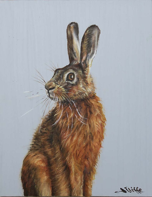 Hare by Jill Iliffe