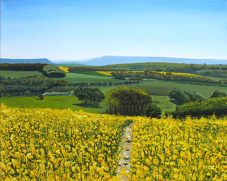 Rapeseed Field beyond the Beacon by Emily Grocott