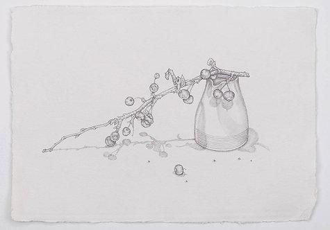 Crab apples with milk jug by Jill Iliffe