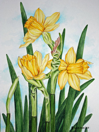 Spring Daffodils by Sandra Smith