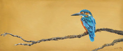kingfisher on branch small