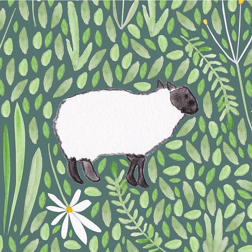 Sheep Greetings Card by Samantha Hall