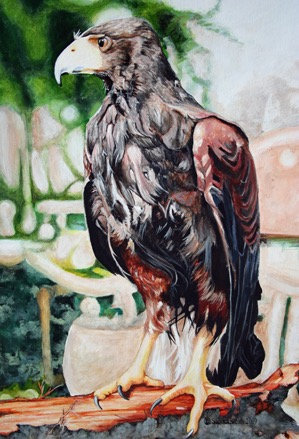 Golden Eagle by Sandra Smith