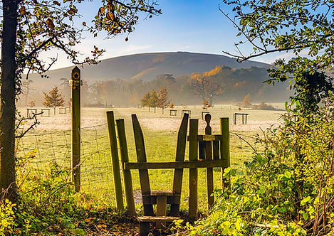 Wolstonbury Morning by Joff Harms