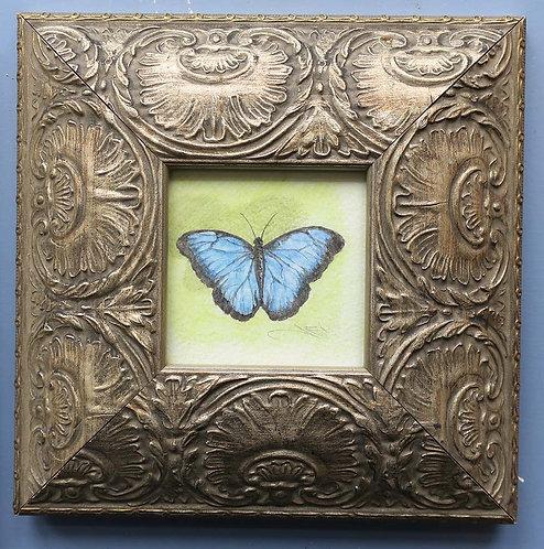 Butterfly IV by Jill Iliffe