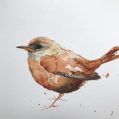 Little Wren by Emma Gillo