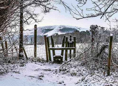Winter Wolstonbury by Joff Harms