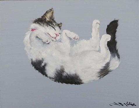 Happy Cat by Jill Iliffe