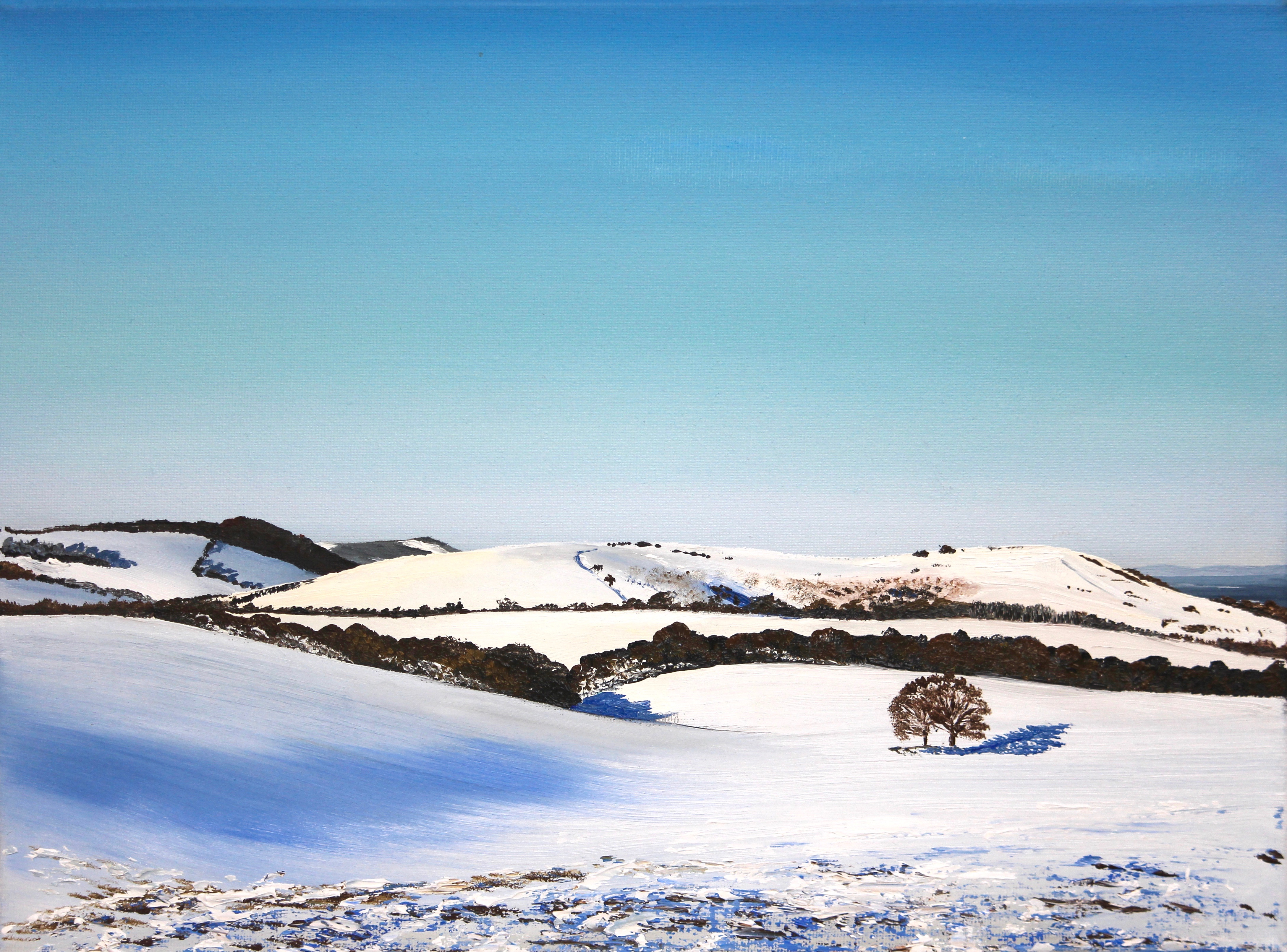 Wolstonbury Hill in snow
