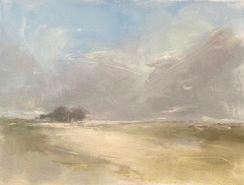 Sharp Sunlight by Kate Harries