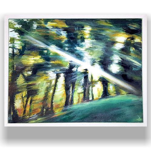 Daylight by Duncan Allan
