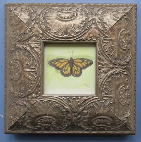 Butterfly III by Jill Iliffe