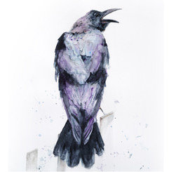 SOLD Crow III by Emma Gillo