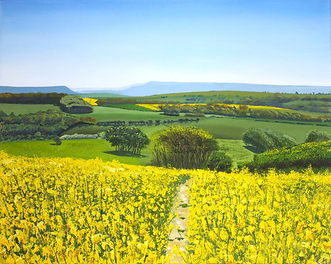 Greetings Card of Rapeseed Fields Beyond the Beacon by Emily Grocott