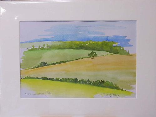 Wolstonbury Hill by Jill Iliffe