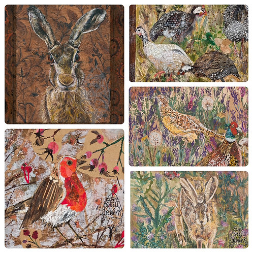 Pack of 5 Greetings Cards with mixed designs by Clare O'Neill