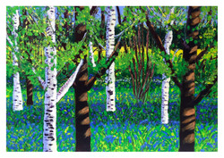 Bluebells in the Woods - Acrylic Paintin