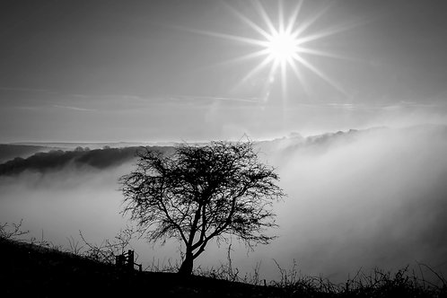 Devils Dyke Mist by Joff Harms