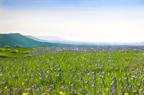 Bluebells on Newtimber Hill by Emily Grocott
