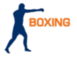 cours boxe paris 12