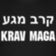 krav maga paris