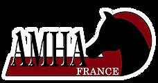 Logo AMHA FR.png