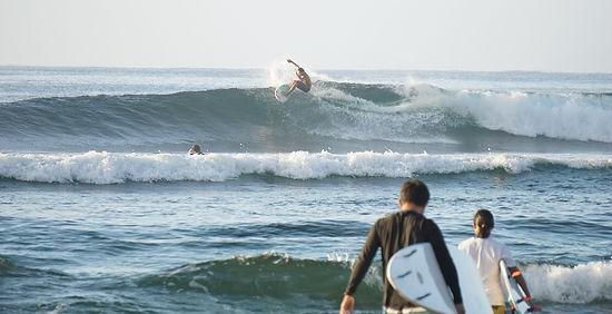 スーサイドの波