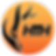 HTH-logo-feb-2018[2526].png
