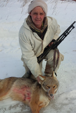 Winter Coyote Hunting