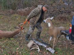 Using Deer Decoys
