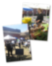 Farmers market At Billings Forge