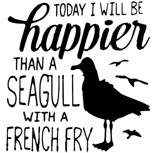 602 SEAGULL FRENCH FRY HAPPY.jpg