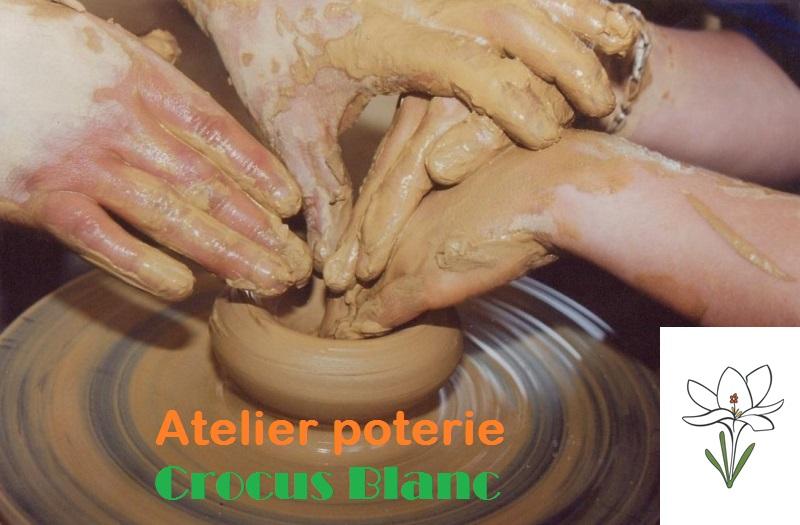 Crocus Blanc Atelier adapté poterie