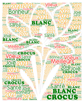 2021 transp.png