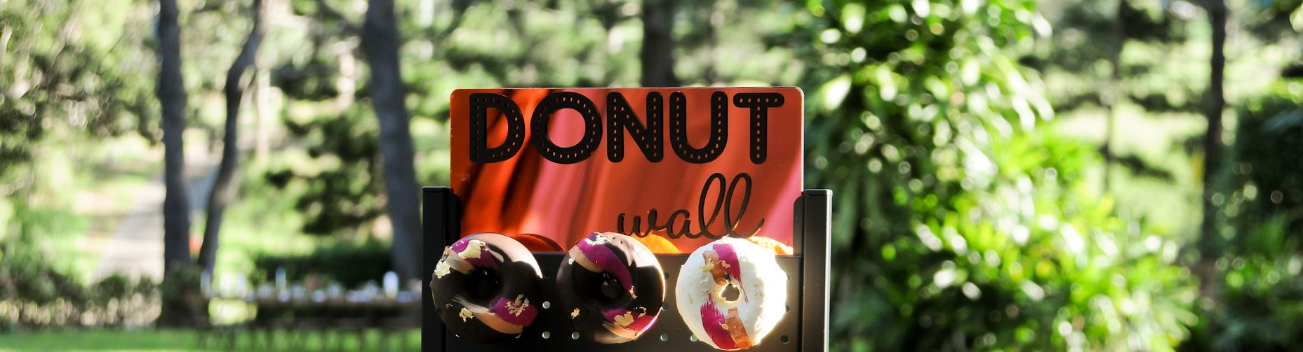 DonutWall1-min