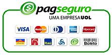 bandeiras-pagseguro-png-7.png