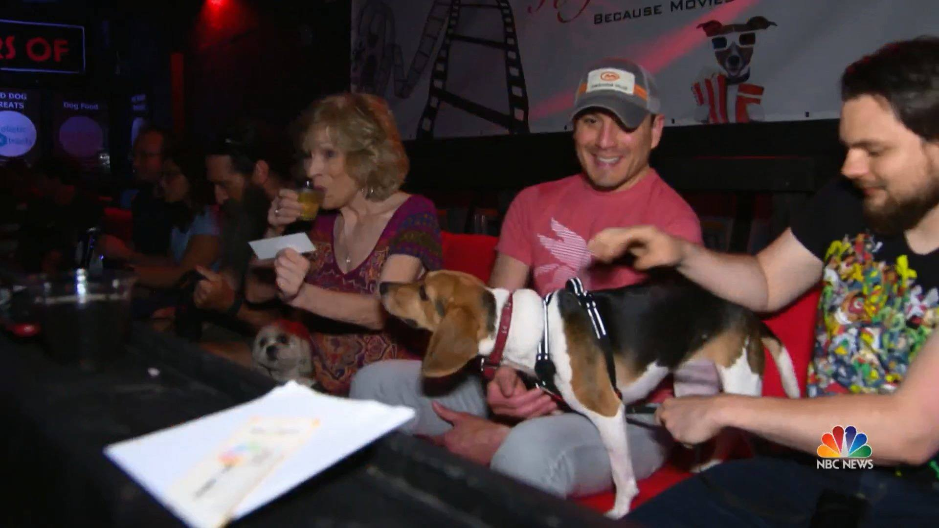 Dogs and humans welcome at this unique Texas movie theater