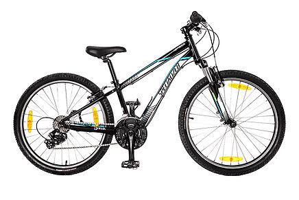 Bicicleta_de_criança.jpg
