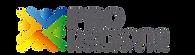 propersona logo.png