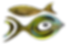 poisson; symbole; fish; oeil ; eye; stream-art; stream-art.fr