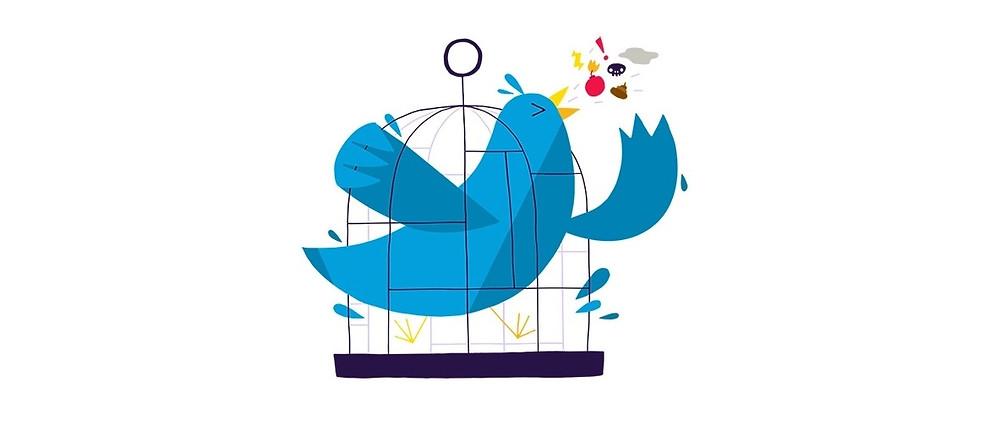 Twitter abuser